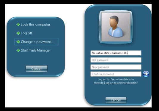 Password Reset screen on a Windows PC